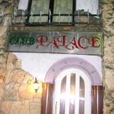 PALACE - パンダ公園投稿写真