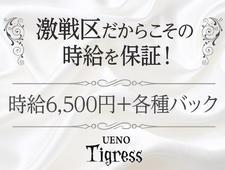 上野Tigress