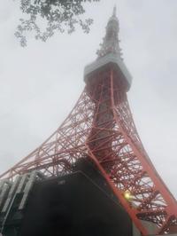 東京タワー🗼の写真