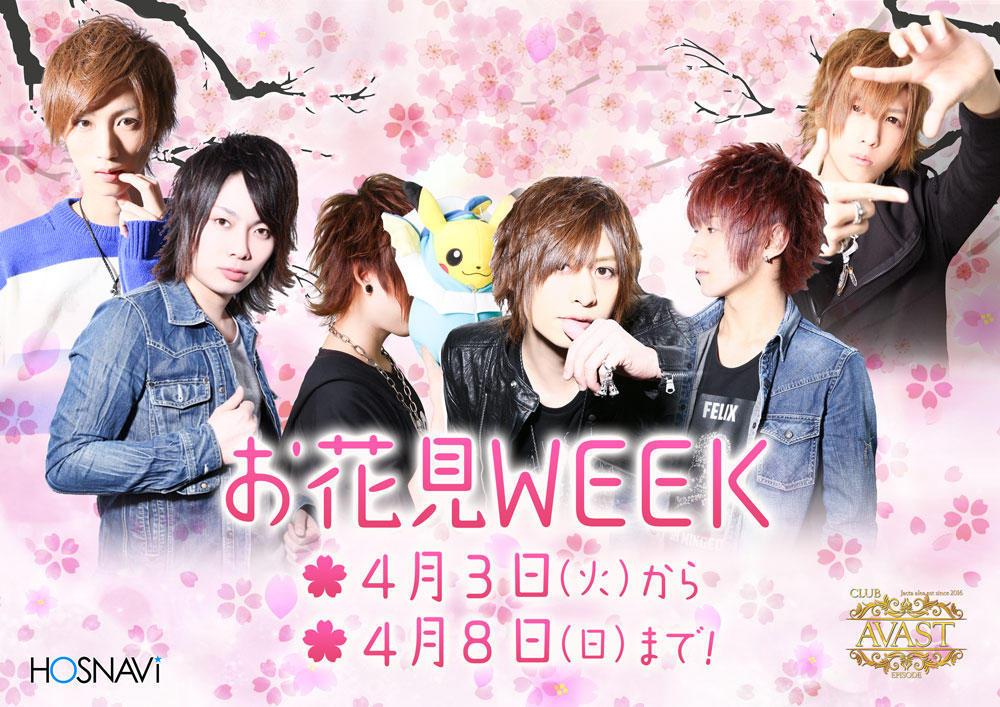 歌舞伎町AVASTのイベント「お花見Week」のポスターデザイン