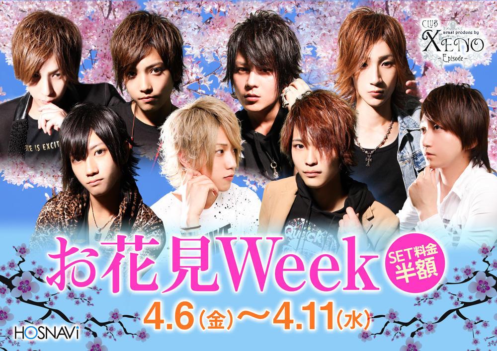 歌舞伎町AVAST -XENO-のイベント「お花見Week」のポスターデザイン