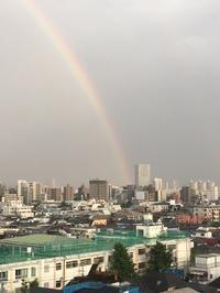 数日前に虹がでてたんだって🌈🌈の写真