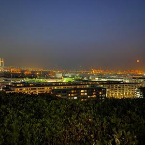 久しぶりに綺麗な夜景みに行きたいな〜の写真1枚目