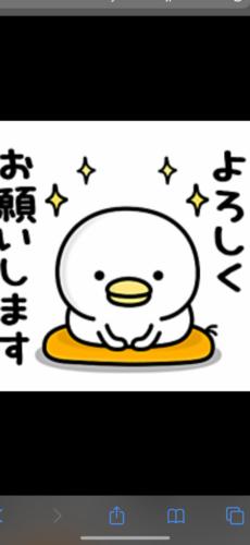 こんにちは!の写真