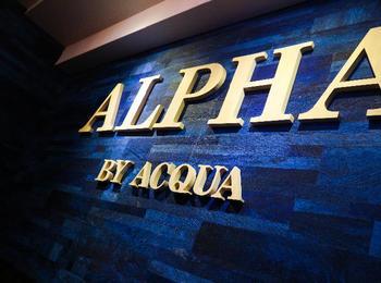 alpha求人写真4