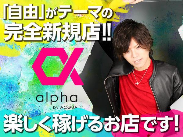 歌舞伎町「alpha」の求人写真