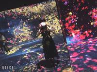 お久しぶりのブログ⸌⍤⃝⸍!の写真