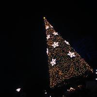 きのうは少し早めのクリスマス堪能しにの写真