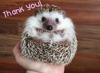 ありがとうー!!🌸の写真