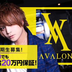 歌舞伎町ホストクラブ「AVALON」の求人写真1