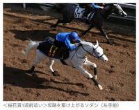 しゅっきん\(* ´ ꒳ ` *)/の写真