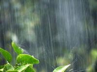 台風ヽ ( ꒪д꒪ )ノの写真