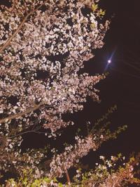 4/5 出勤🌼の写真