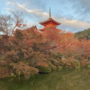 この間1泊2日で京都旅行に行ってきました〜の写真1枚目