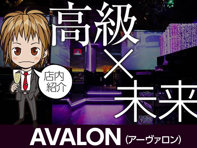 特集「高級×未来 AVALON店内紹介」