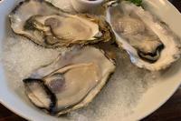 この間食べた生牡蠣\(^▽^)/の写真