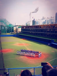 プロ野球開幕は6月19日!!!の写真