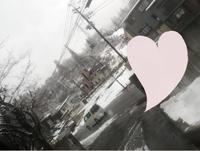 しゃきーん(*´∇`*)の写真
