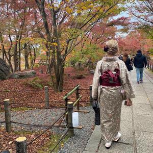 こんばんは!この間大阪・京都旅行に遊びに行ってきました〜😊京都では着物を着ました!少し大人っぽい柄…の写真1枚目