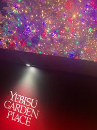 こんにちは!るいです😋この前友達と恵比寿ガーデンプレイスのクリスマスツリー見てきました!すごいカラ…の写真