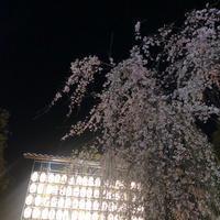 🌟22時〜の写真