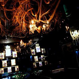 歌舞伎町ホストクラブ「EVO」の求人写真12