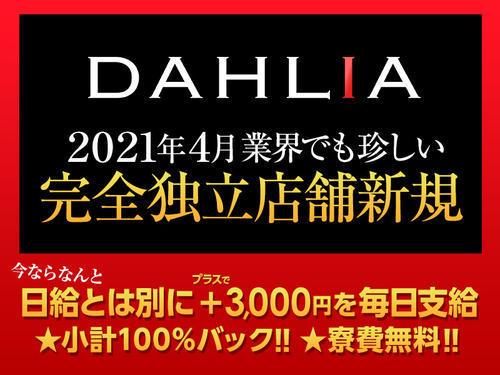 歌舞伎町DAHLIA「未経験者も活躍できるお店!!!」