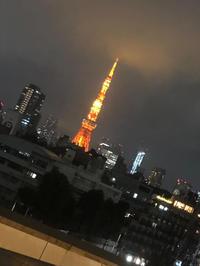 こんばんは(´・ᴗ・` )の写真