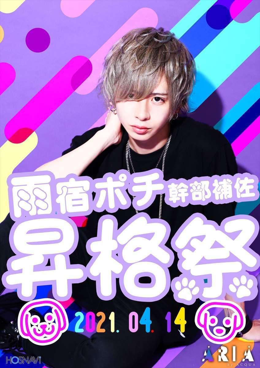 歌舞伎町AXEL ARIAのイベント「雨宿ポチ昇格祭」のポスターデザイン