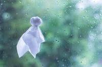 雨☔️の写真