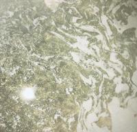 今日のお風呂はLUSH🛁の写真