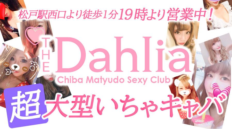 The Dahliaのメインビジュアル
