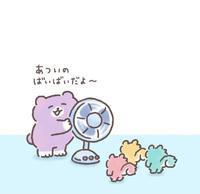 8/5🍉の写真
