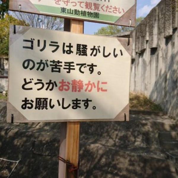 錦糸町ガールズバー「ティアラ」