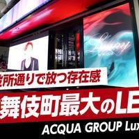 ニュース「歌舞伎町最大!突如現れたLEDビジョン。Luxuryってどんなお店!?」
