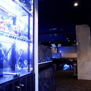 歌舞伎町ホストクラブ「INNOVATION」の店内写真