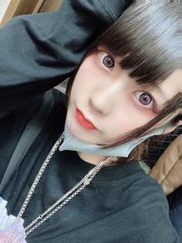 こんばんわん!!の写真