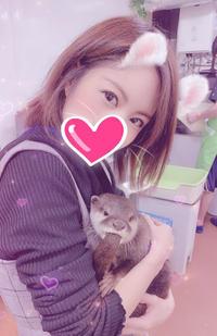 今日はお店がお休みで、少しだけモモンガちゃんと、カワウソちゃんとふれあいました(∩˃o˂∩)♡の写真