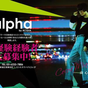 歌舞伎町ホストクラブ「alpha」の求人写真1