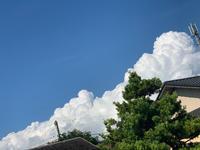 今日は台風の予定だったのにの写真