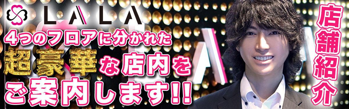 歌舞伎町ホストクラブ「LALA」豪華店内をご紹介!!