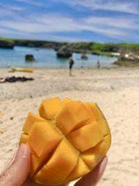 マンゴー食べたいな🥺の写真