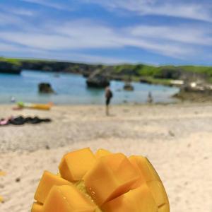 マンゴー食べたいな🥺の写真1枚目