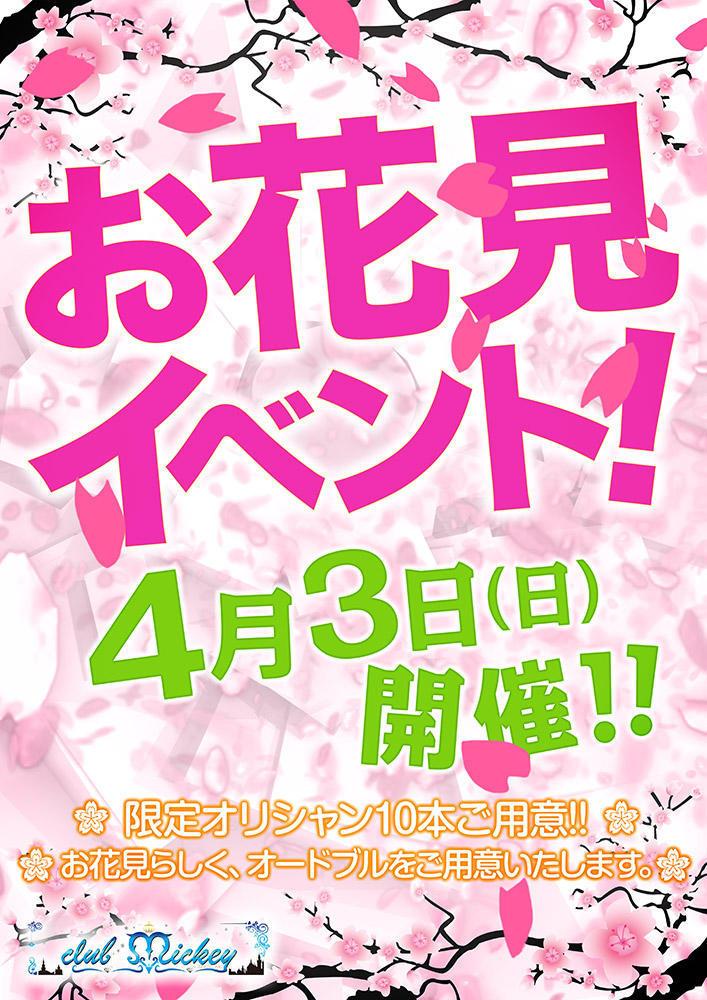 歌舞伎町Mickeyのイベント「お花見イベント」のポスターデザイン