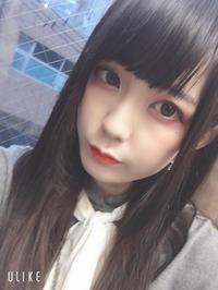こんばんわん!の写真