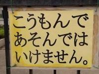 金曜日がきたー(゚∀゚ 三 ゚∀゚)写真1