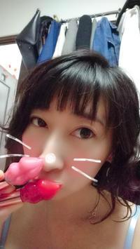 こんばんにゃん(ФωФ)の写真