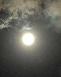 今日は中秋の名月で8年ぶりに満月と同日みたいです🌕✨✨の写真