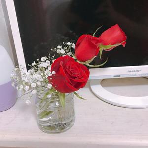 薔薇の花をもらったので、おうちに飾りました🌹💐の写真1枚目