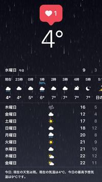 今日も寒すぎるって〜!!の写真